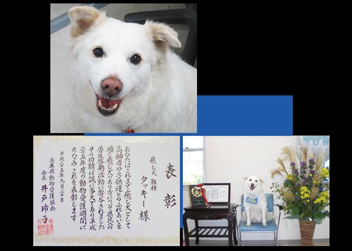 特別養護老人ホーム万寿の家「たきお」