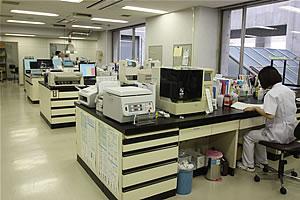 生化学検査の写真